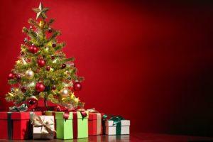 小学6年生 クリスマスプレゼント 男の子